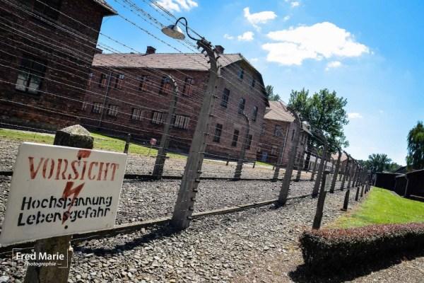 Sujet Auschwitz-16