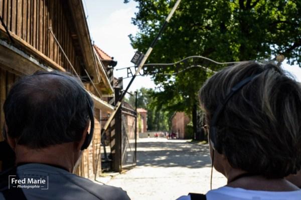 Sujet Auschwitz-6