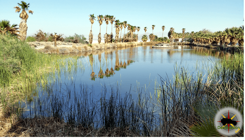 ake Tuendae, an Oasis in the Mojave Desert is found at the end of Zzyzx Road off the I-15. Photograph by James L Rathbun