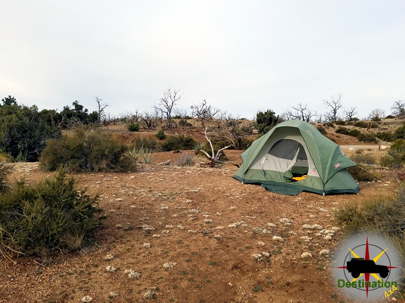 Our tent located in a large campsite in the Mid Hills Campground in the Mojave National Preserve.