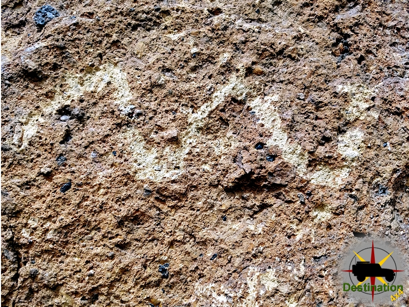 A snake is just one of many petroglyphs on the Ring Trail, Mojave National Preserve.