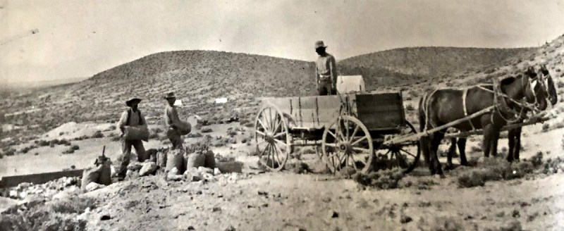 Broken Hills Nevada, c 1915. Ore sacks being loaded for shipment to the railroad at Fallon.