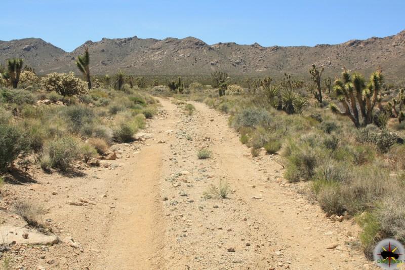 The Morning Star Mine Cutoff Road.