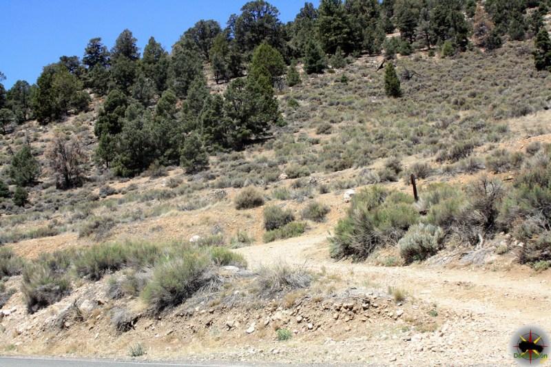 Gold Mountain 3N69 Trail Head