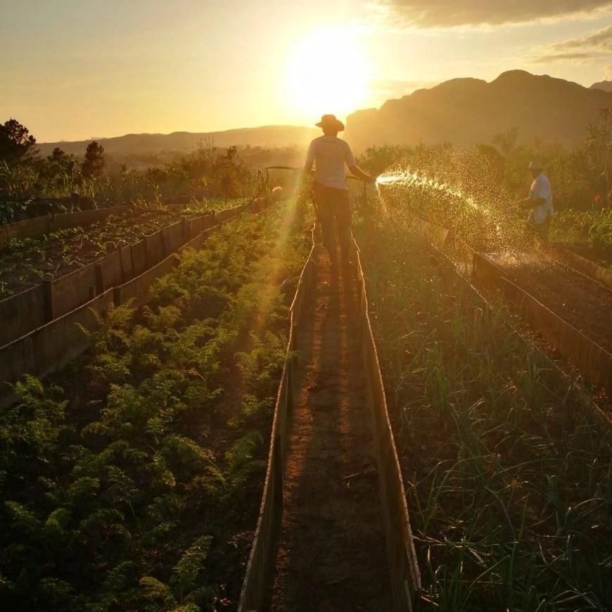 Destination Addict - Watering their huge garden at sunset - Finca Paraiso, Viñales, Cuba