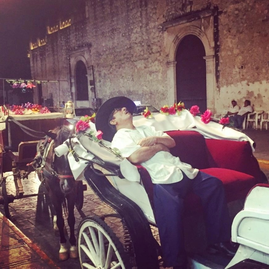 Destination Addict - This horse drawn carriage driver just having a snooze amongst everything going on around him on the streets of Merida!