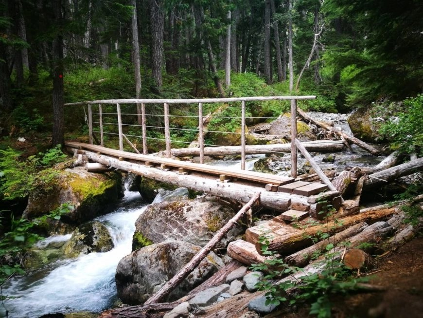 Destination Addict - One of the many bridges to cross on the Skywalk Trail, near Whistler, British Columbia, Canada