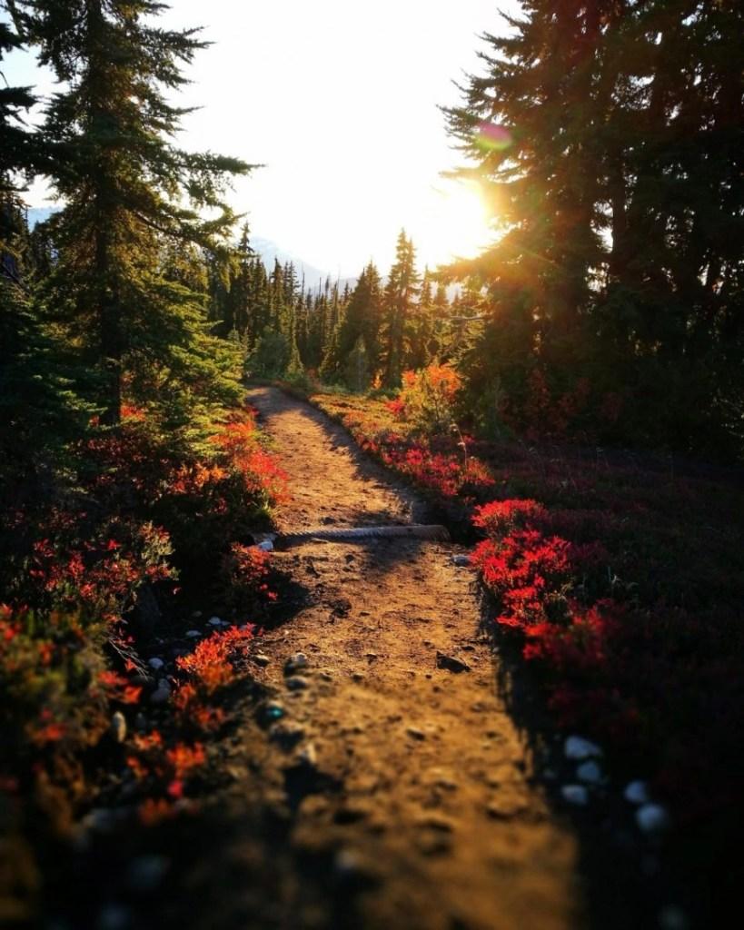 Destination Addict - The sun setting whilst hiking in Garibaldi Provincial Park, near Whistler, British Columbia, Canada