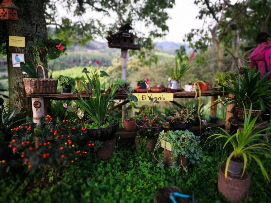 Destination Addict - Such pretty gardens at El Ocaso, Salento, Colombia
