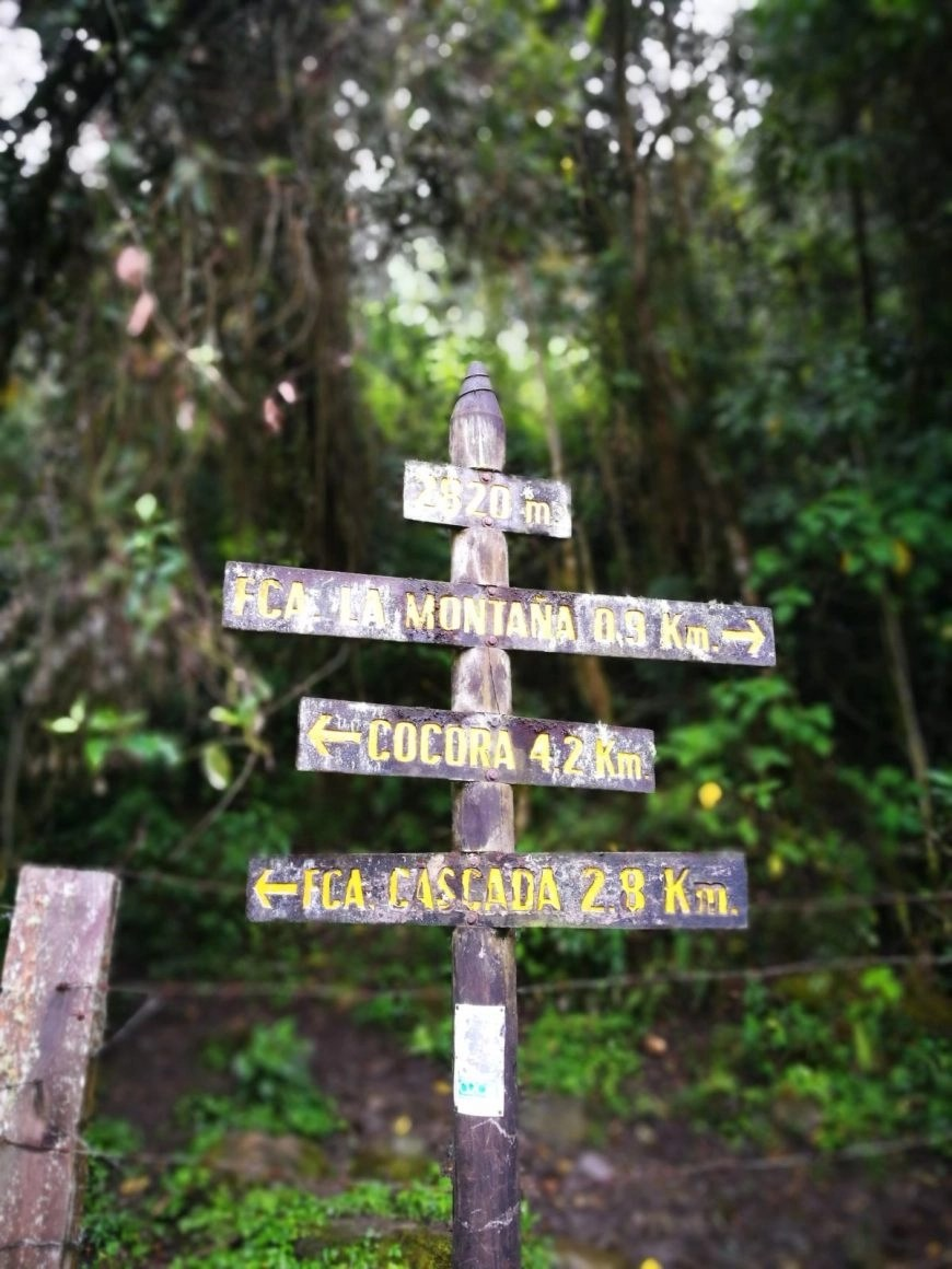 Destination Addict - Finding our way on the Cocora Valley trek, Salento, Colombia