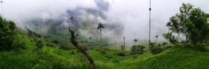 Destination Addict - Enjoying views over the Cocora Valley, Salento, Colombia