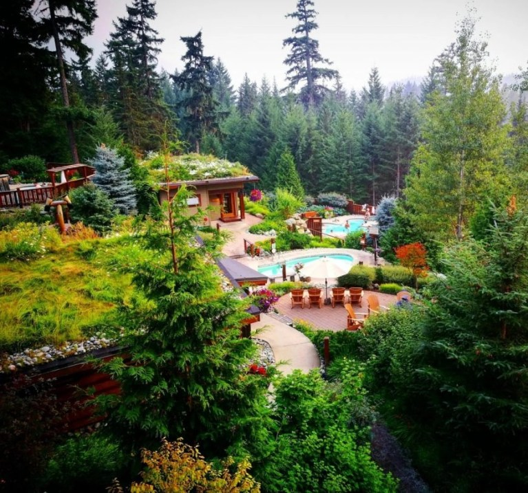 Tranquil zen of the Scandinave Spa - Things to do in Whistler when it rains