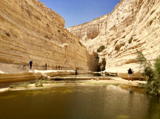 IMG_2077 Exploring The Negev Exploring The Negev diy-israel