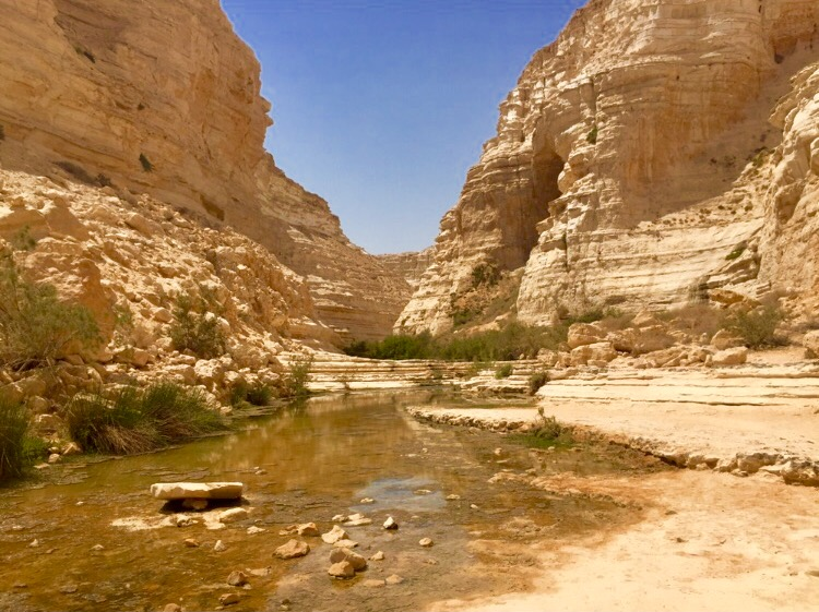 Ein Avdat National Park & Canyon