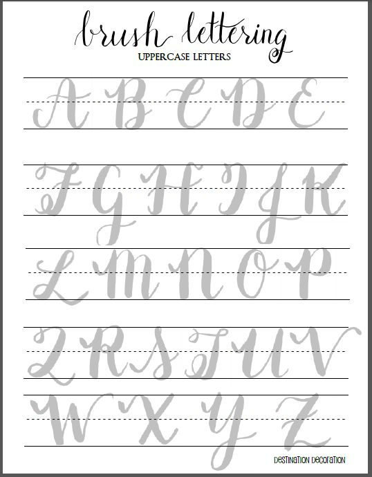 dotted line font microsoft word download