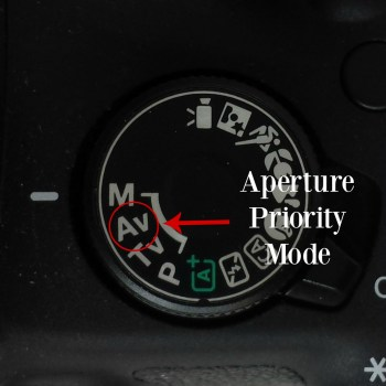 The Beginner's Guide to DSLR Photography-Part II: Shooting in Manual Mode | How to Use Aperture and Shutter Priority Mode to Ease Into Shooting in Manual Mode | How to Have Full Control Over Your Settings by Shooting in Manual Mode