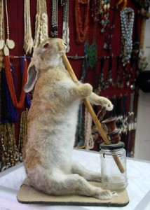 rabbit smoking hookah