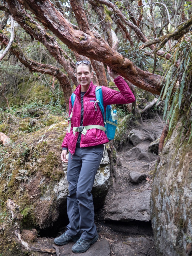 Cajas National Park Hayley in the paper tree forrest