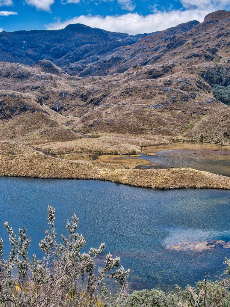 Cajas National Park - Laguna Pataquinoas