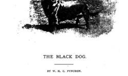 Câinele-negru-fantomă-din-Hanging-Hills-2