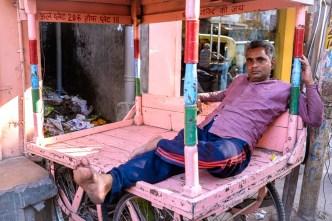 Shanti shanti in the pink city