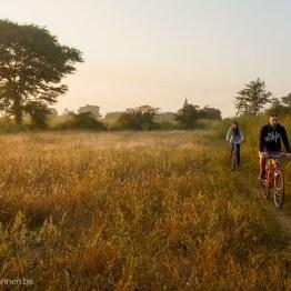 Bicycling at sunrise