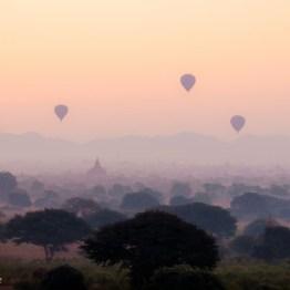 Several hot air balloons