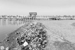 Coconut garbage disposal area