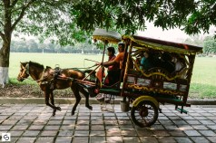 Riding horses and carriage in Hue, Vietnam