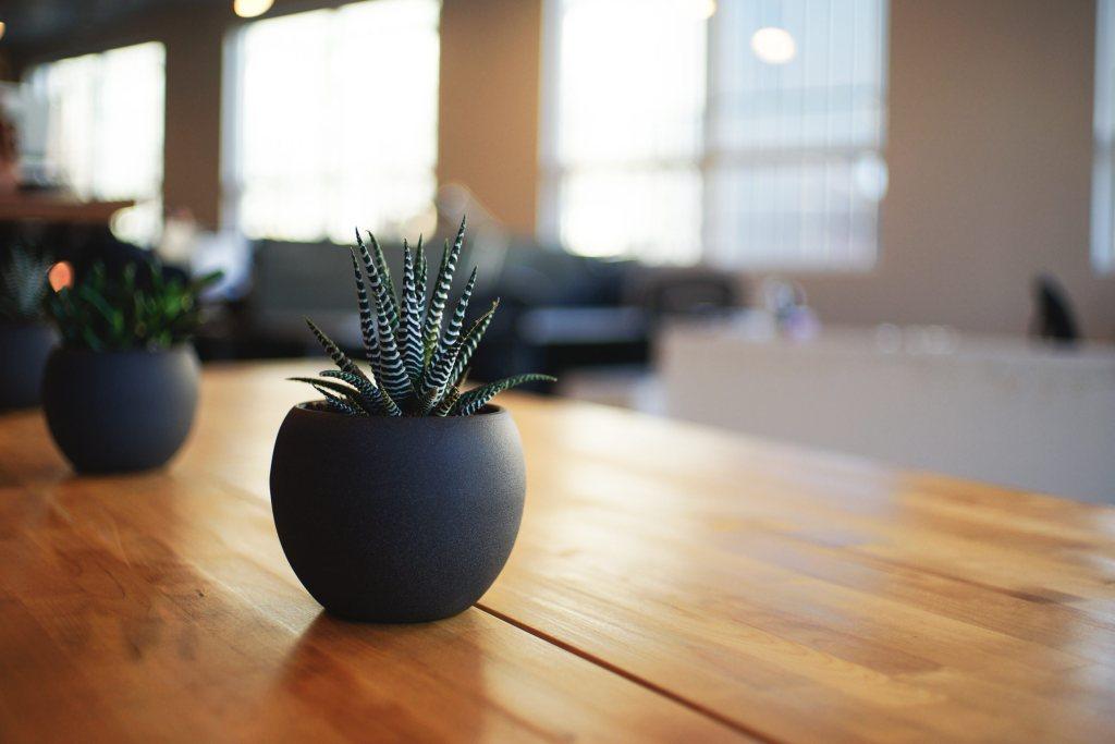 Como importar Material de Escritório da China Mesa de madeira com vaso preto com planta