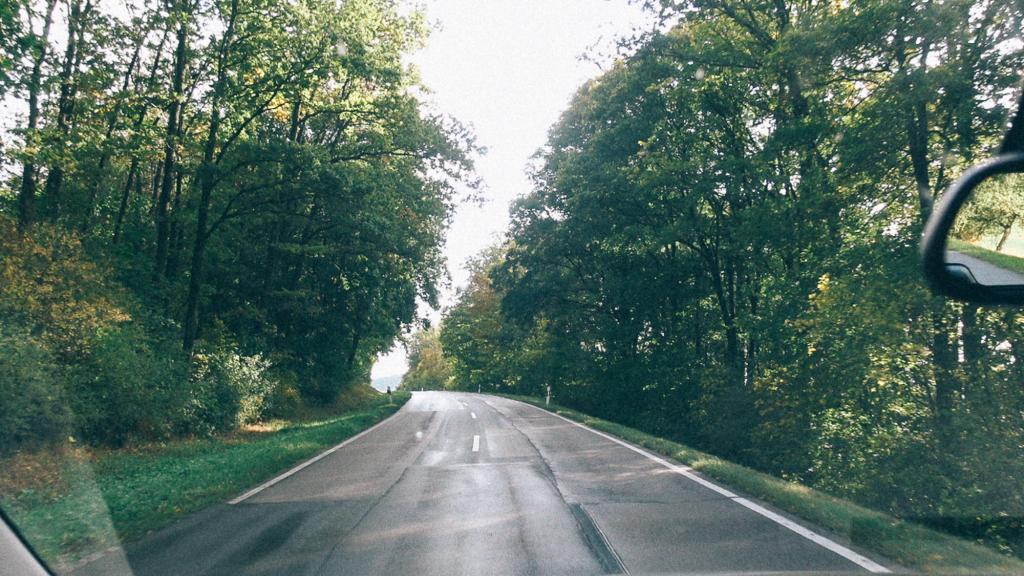 Recebimento da Carga no Brasil Imagem de estrada com linda área arborizada ao redor