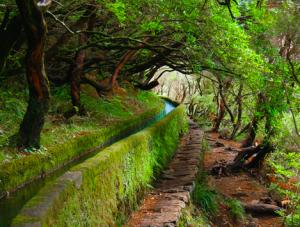 Escapadinhas na Madeira