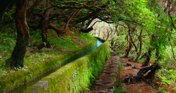 Viagens Baratas Madeira