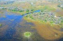 Delta do Okavango. Autor: Teo Gómez