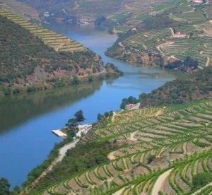 Cruzeiros na região do Douro em Oferta