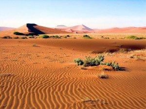 Deserto do Namibe. Autor: Bjørn Christian Tørrissen sob licença Creative Commons Attribution-Share Alike 3.0 Unported