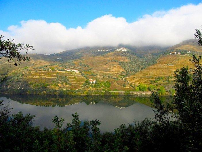 Vinhas do Douro