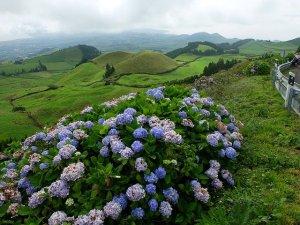 Circuitos turísticos nas ilhas açorianas