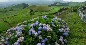 Voos baratos para os Açores