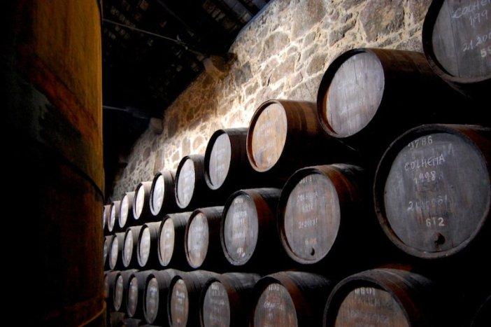 Visita às Caves do Vinho do Porto