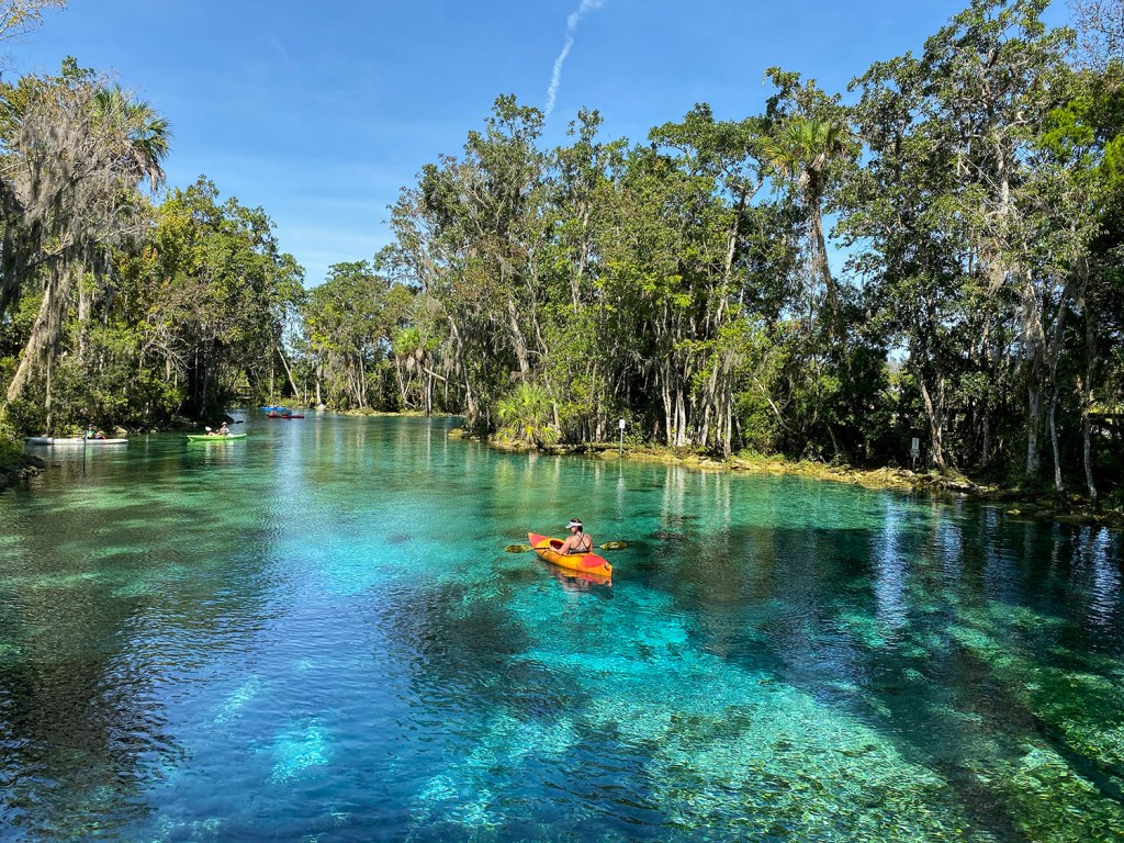 Three Little Springs, em Crystal River (Foto: Andy Spinelli)