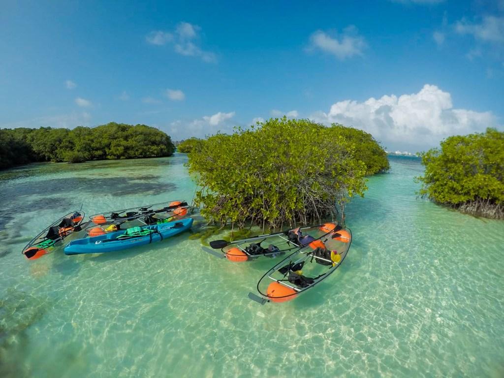 EcoFiwi Turismo