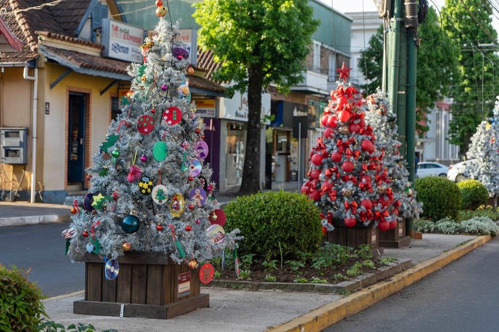 33º Sonho de Natal de Canela: Árvores do Sonho