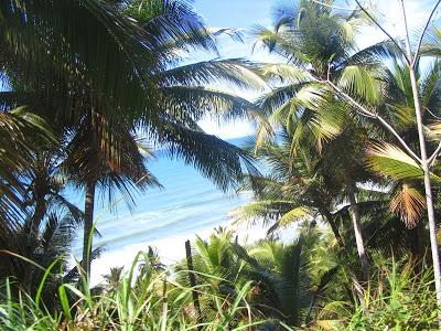 Praia de Itacarezinho, pequena só no nome