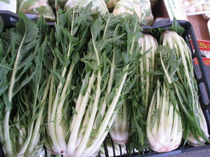 Esta verdura eu nem sei o nome