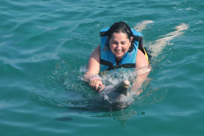 Nadar com golfinhos é muito divertido