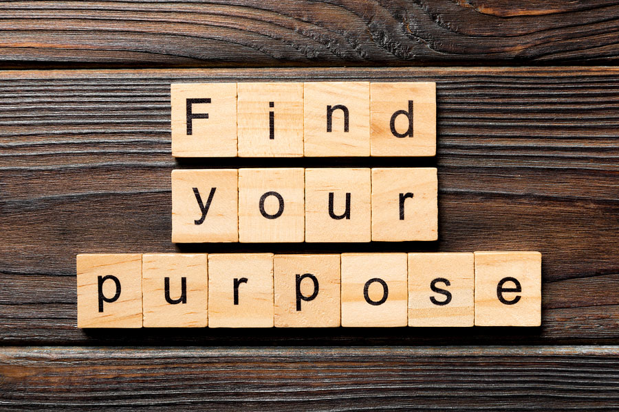 FROM PROBLEM TO PURPOSE