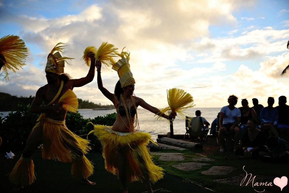 expensive-hawaiian-vacation-family-dsm-4