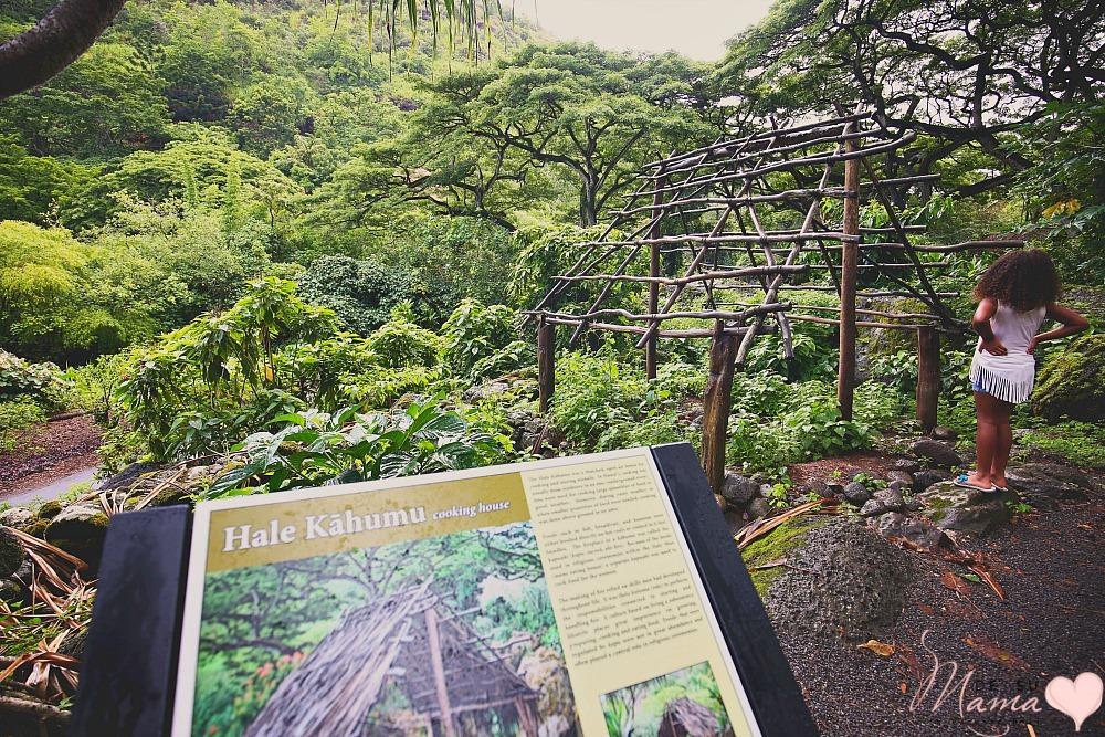 Waimea Valley, Hawaii: Latina Travel Blogger