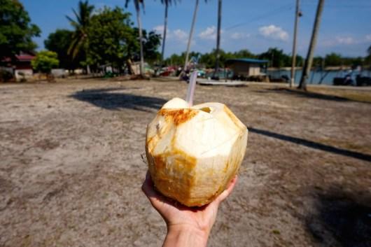 Kokosnuss Malaysia